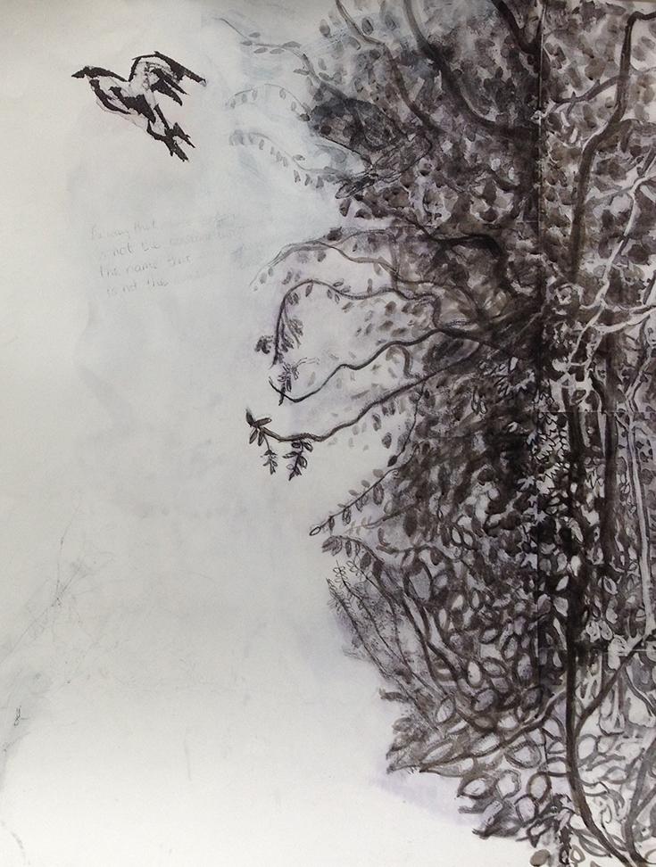 birdforest2