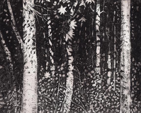 starwoods(web)